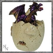 BREAKING FREE PURPLE DRAGON TRINKET BOX 10CM BY NEMESIS NOW